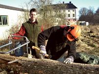 Ekolsund_sawmill_202
